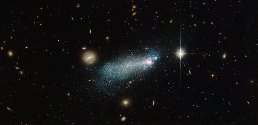 An intriguing young-looking dwarf galaxy